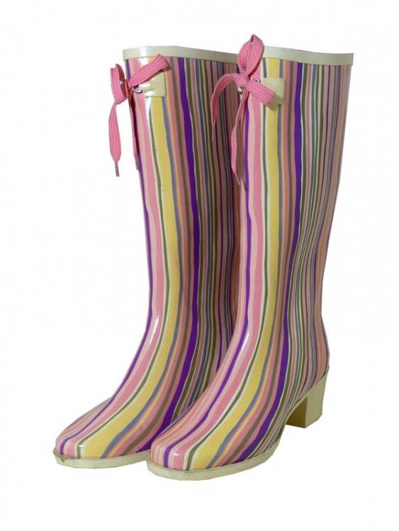 Интернет магазин - модные женские резиновые сапоги.